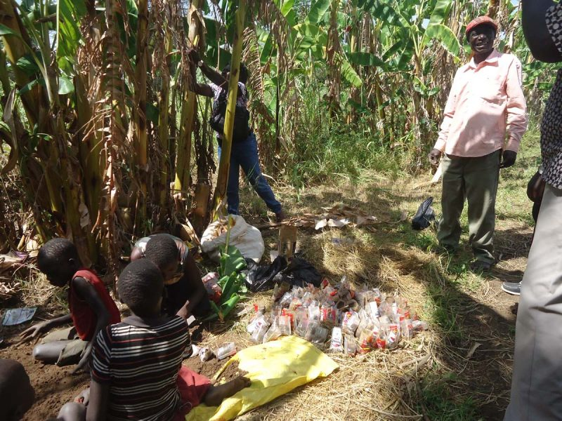 WOMEN ENGADGED IN AGRO-FORESTRY FOR ENVIRONMENTAL CONSERVATION